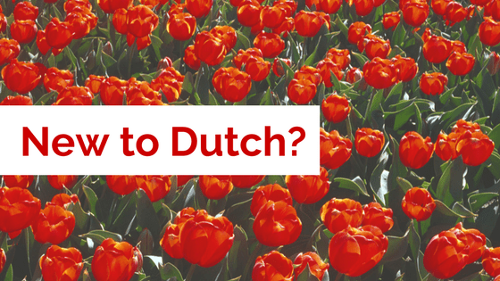 Amsterdam Dutch Course for Free